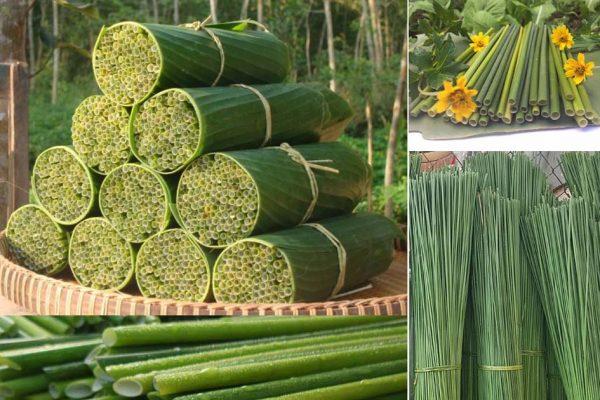 Sử dụng ống hút cỏ bàng góp phần bảo vệ môi trường